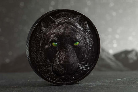 Hunters by Night Black Panther Obsidian Black Silver Coin