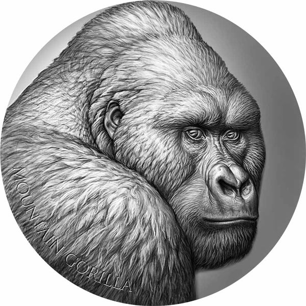 2021 CAMEROON 2 OUNCE MOUNTAIN GORILLA EXPRESSIONS OF WILDLIFE HIGH RELIEF ANTIQUE FINISH SILVER COIN