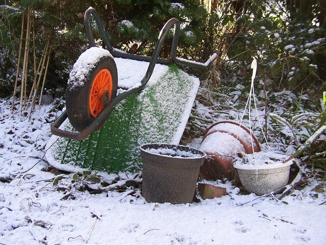 Six Ways to Prepare Your Garden for Winter