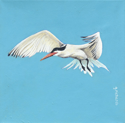 Blue Tern Painting #111