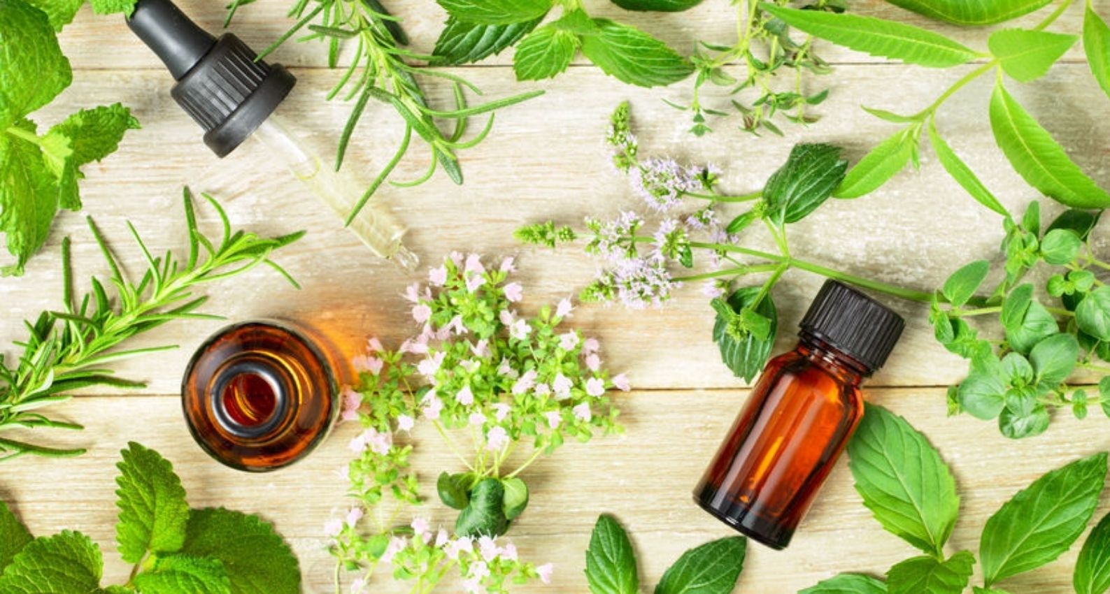 peppermint_essential_oils_for_tummy_ache_relief