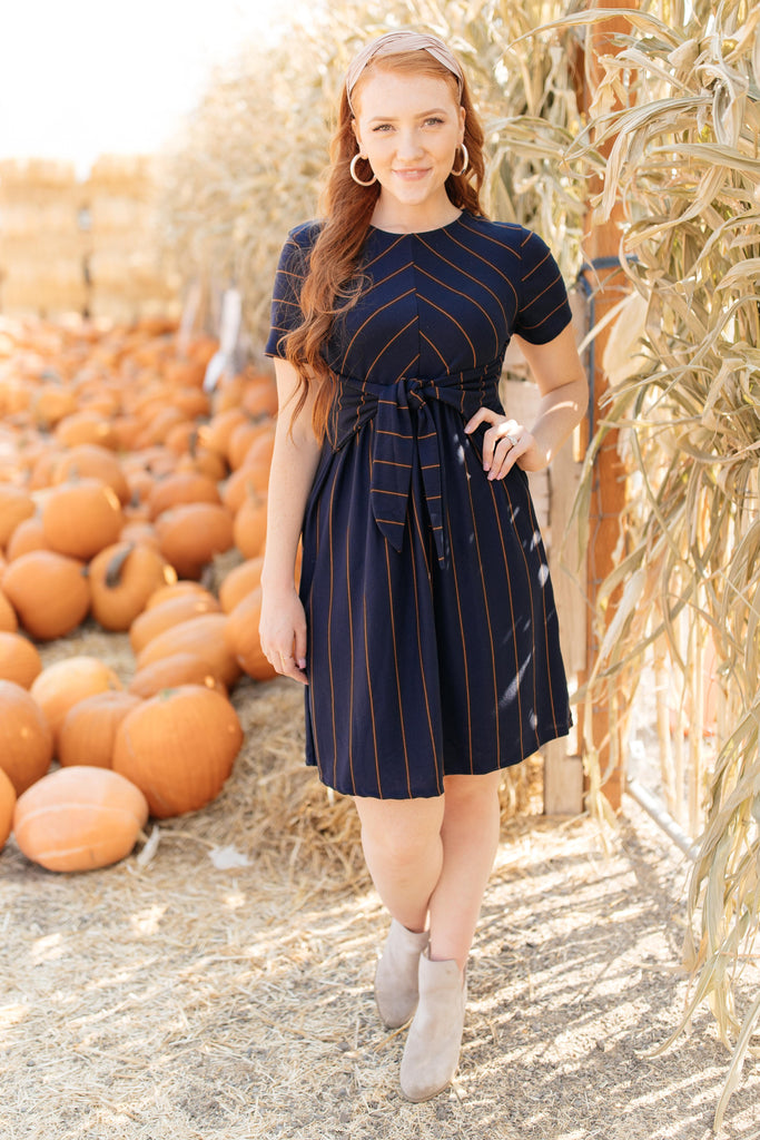 Angles And Stripes Dress in Navy - Everest & Co.