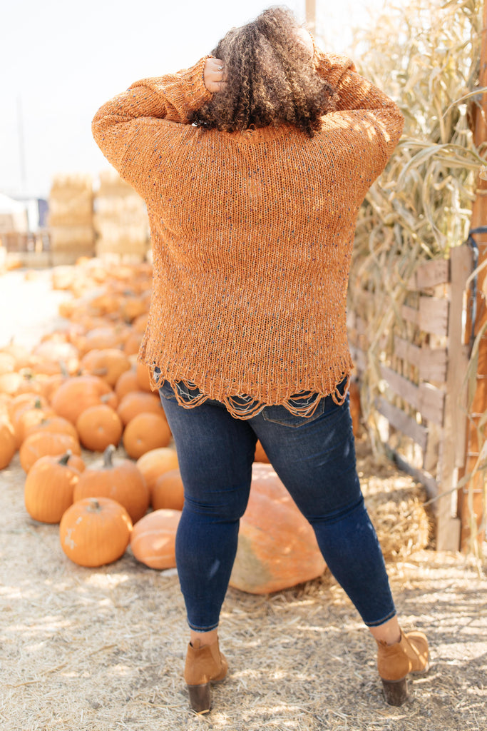 Dusted With Colors in Pumpkin Spice - Everest & Co.