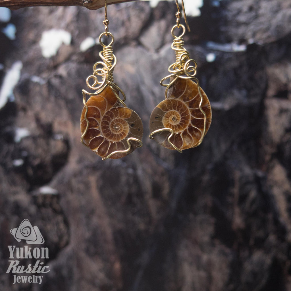 Ammonite Fossil Earrings (gold wire)