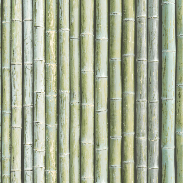 Bamboo Wallpaper in shades of Green & Sage - G67941