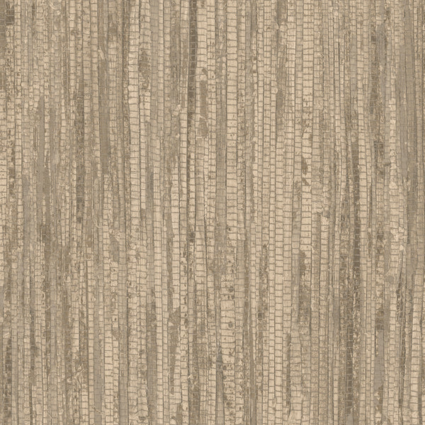 Rough Grass Wallpaper in shades of Brown & Beige - G67965