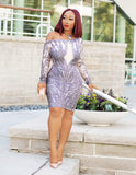 Bejeweled Glitz- Bodycon Dress (NEW)