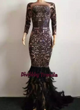 Bridee Sparkles- Feather Dress (NEW)
