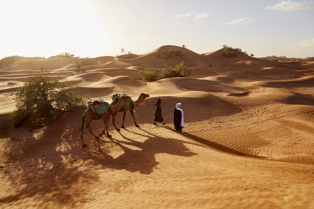 Globetrotting: Morocco