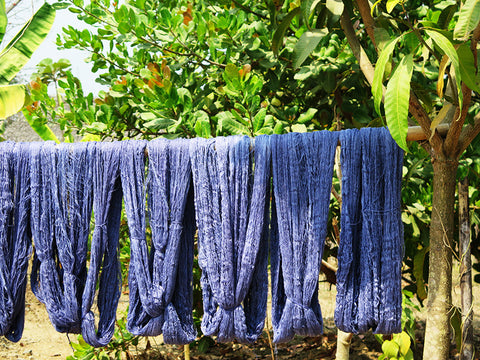 Indigo Skeins Drying