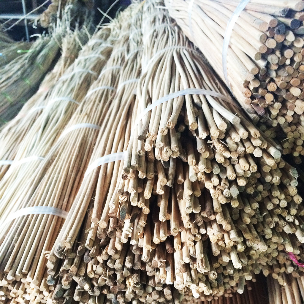 Rattan ready for weaving