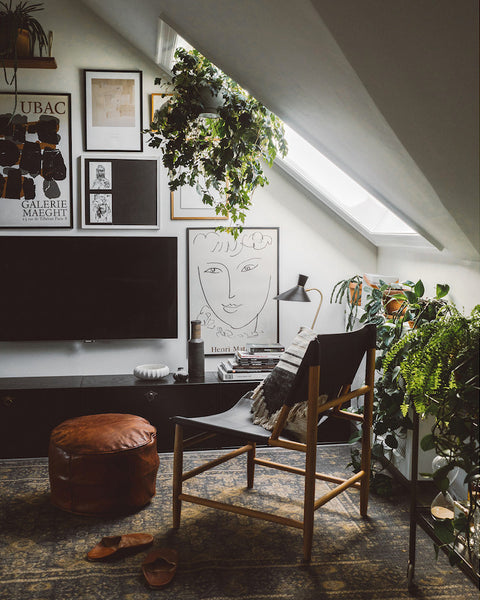 House Plants in a gorgeous Skandi Home