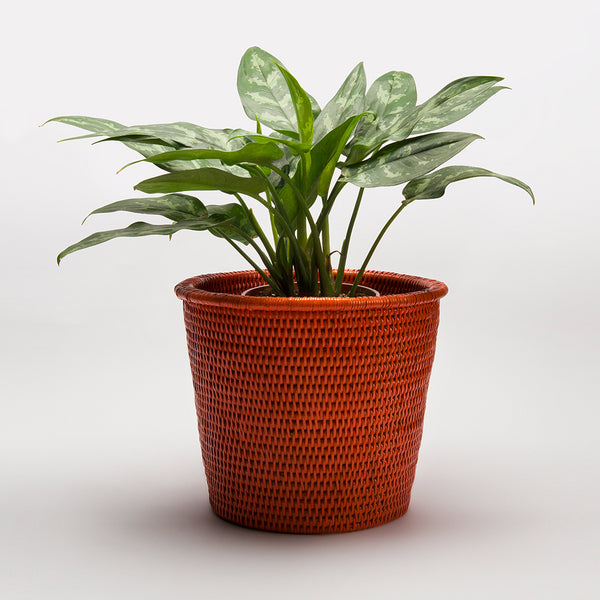 Kanbalu Rattan Planter | 3 Sizes | Orange