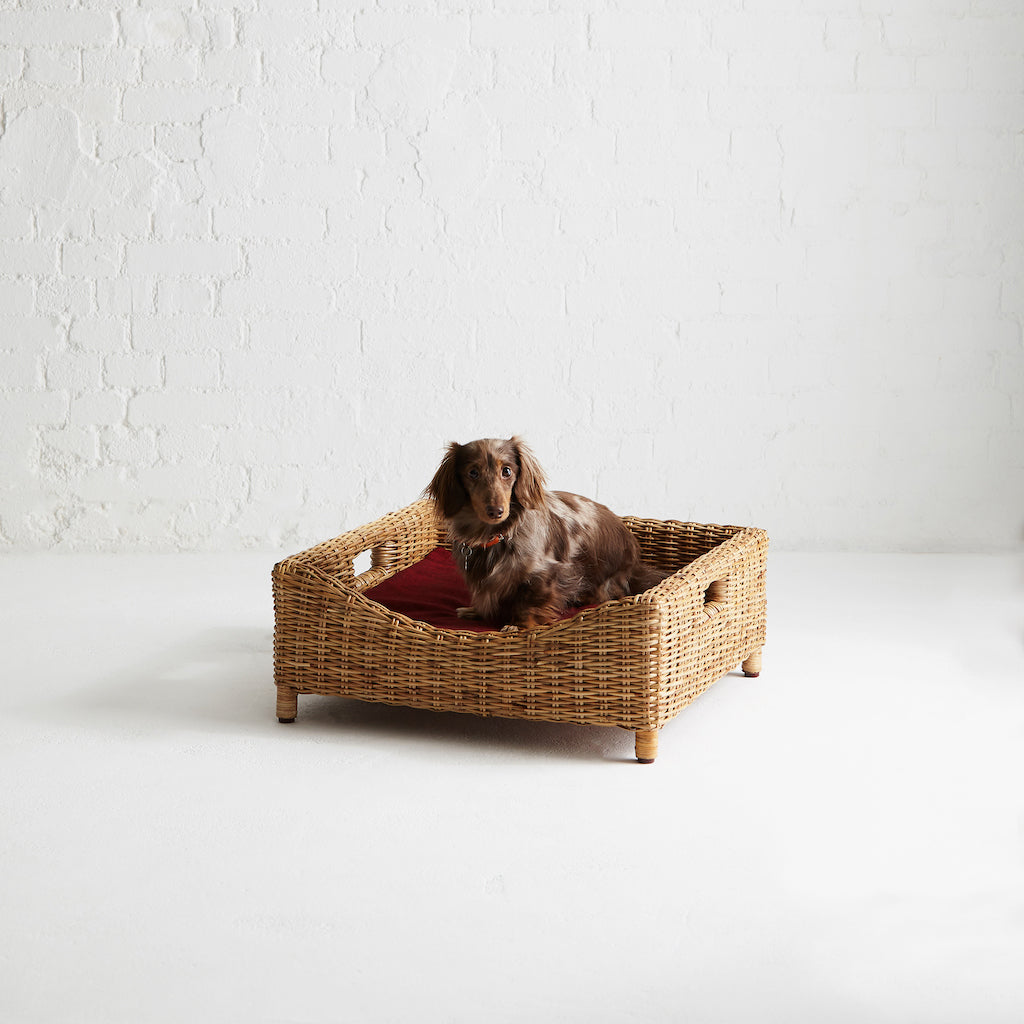 Kway Rattan Pet Bed | Medium