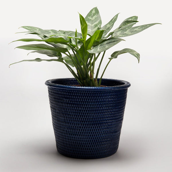 Kanbalu Rattan Planter | 3 Sizes | Dark Blue