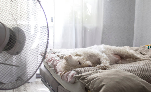 How to Sleep Comfortably on Hot Summer Nights