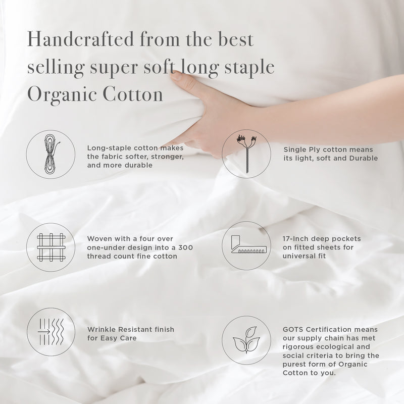 Organic Cotton Sheet Set