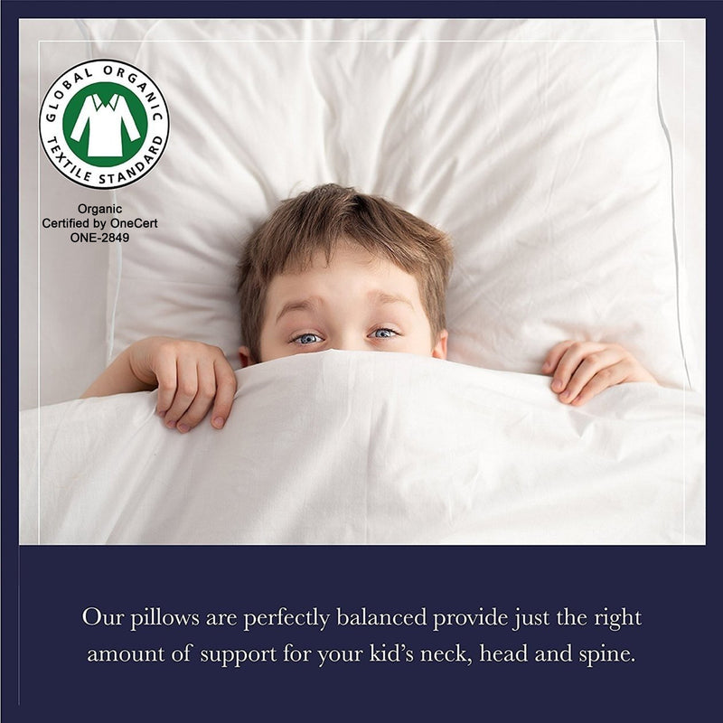 Down Alternative Kids Pillow