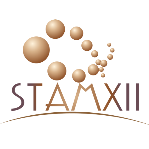 STAMXii Hyaluronic Acid Day and Night Face Serum, 30ml