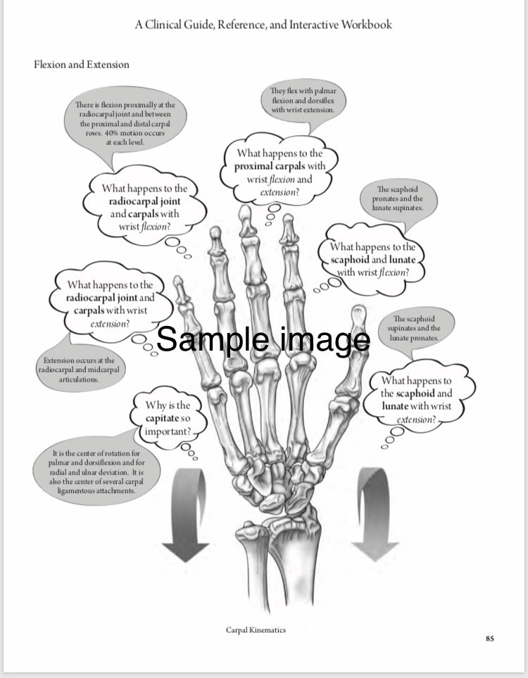 Affordable Hand Therapy Resources