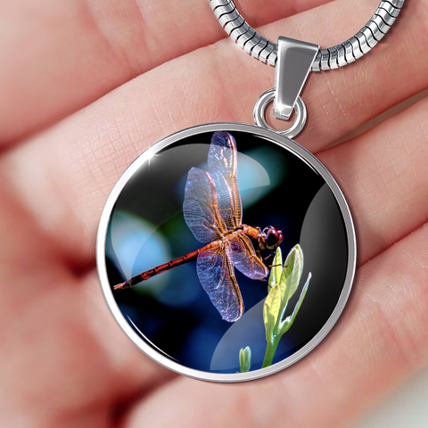 Dragonfly Love Luxury Jewelry