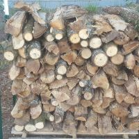 Pecan Wood Logs for Cooking