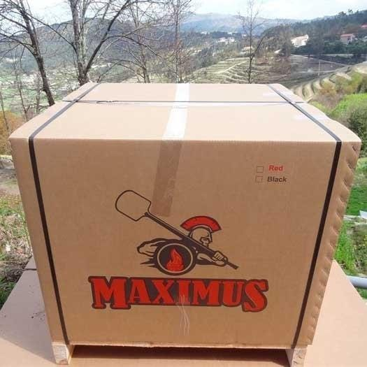 Maximus Outdoor Pizza Oven with Stand