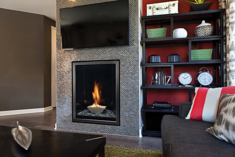 Image of Empire Forest Hills Portrait-Style Contemporary Direct-Vent Fireplaces