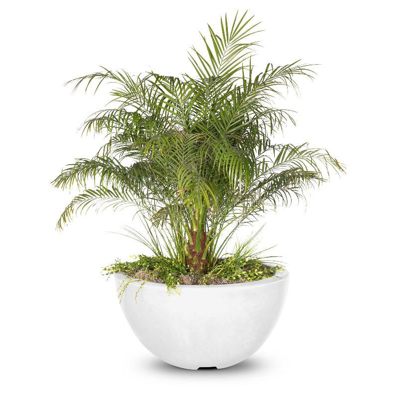 Luna Planter Bowl