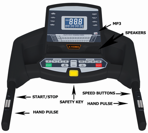 TM-301 Treadmill  (3 H.P)