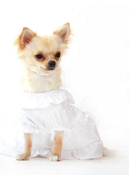 'Bride Wedding Dress' with Veil for your Pet Dog