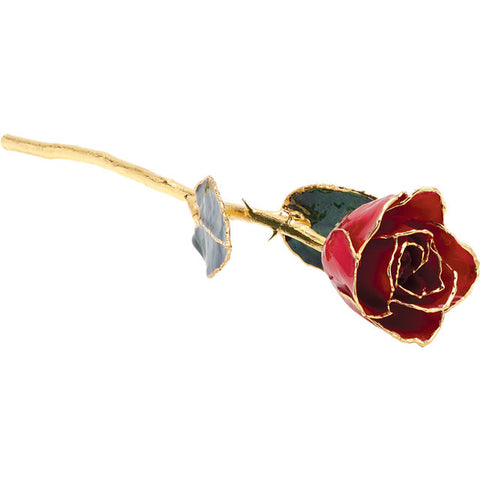 Lacquered Red Rose With Gold Trim