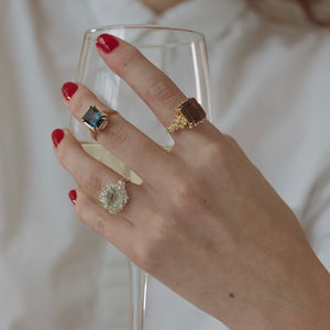 The Cleodora Ring II