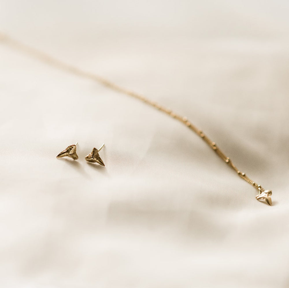 Gold Fossilized Sharks Tooth Necklace