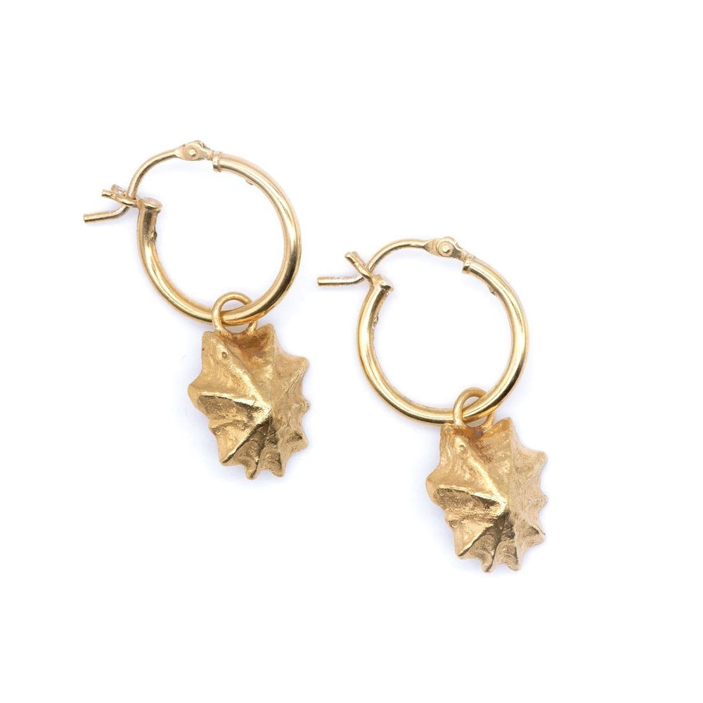 Gold Limpet Hoop Earrings