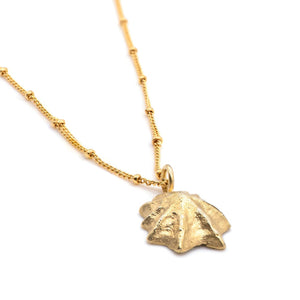 Gold Limpet Necklace