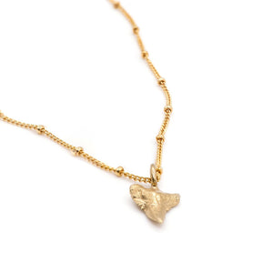fossilized shark tooth jewellery