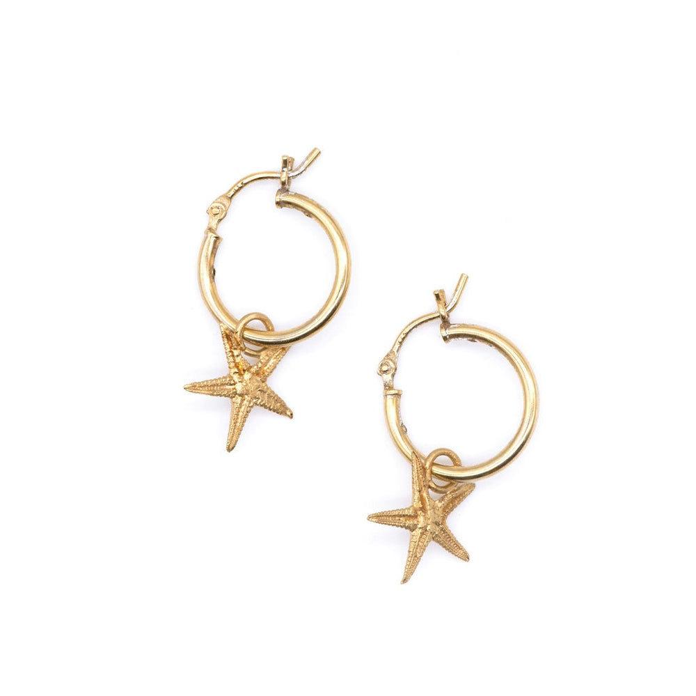 dainty gold starfish hoop earrings