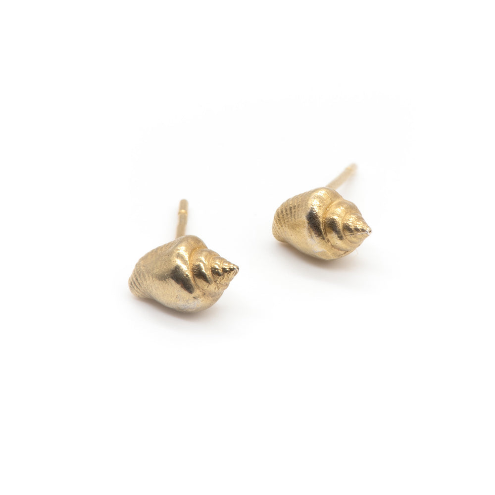 Tiny Seashell Studs in 18ct Gold