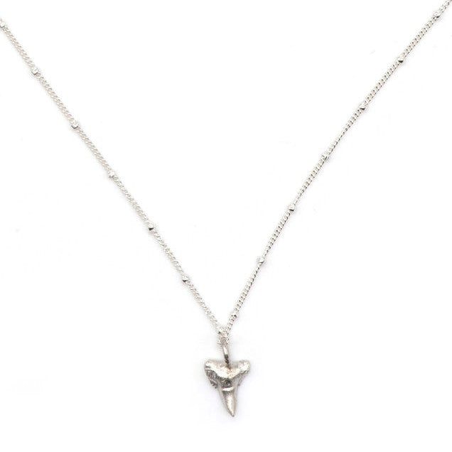 Fossilized Sharks Tooth Necklace