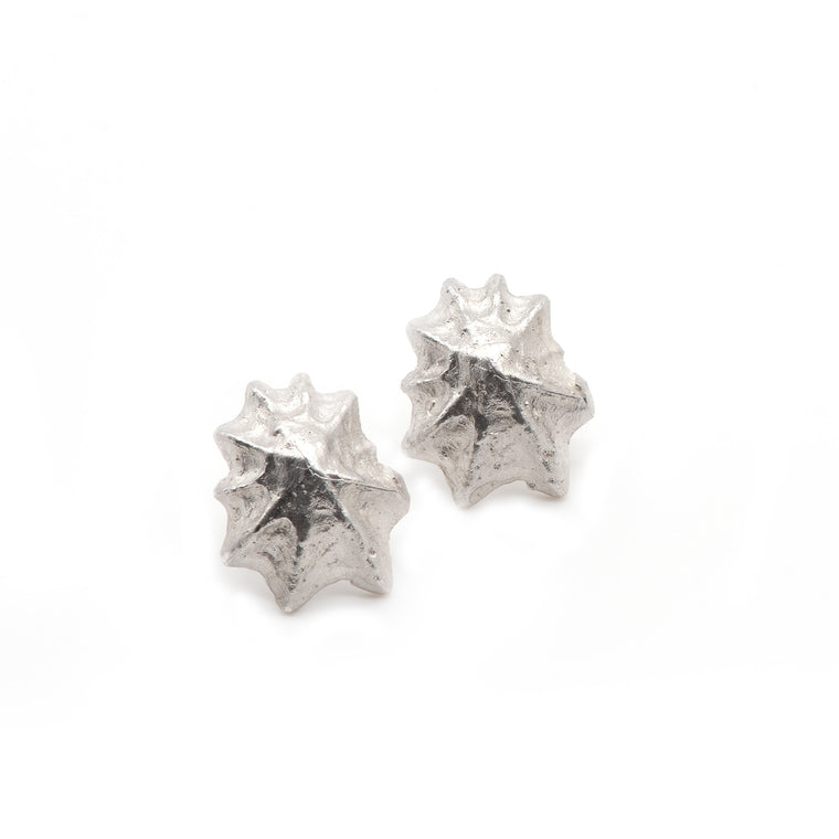 Cornish Seashell Earrings. Ocean Inspired Earrings. Limpet Studs