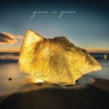 GONE IS GONE - Echolocation LP