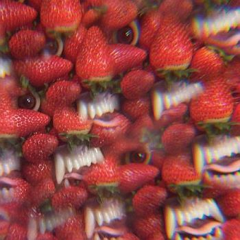 OH SEES - Floating Coffin LP