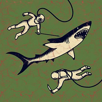SHEPPARTON AIRPLANE - Sharks LP