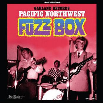 v/a- PACIFIC NORTHWEST FUZZ BOX LP (colour vinyl)