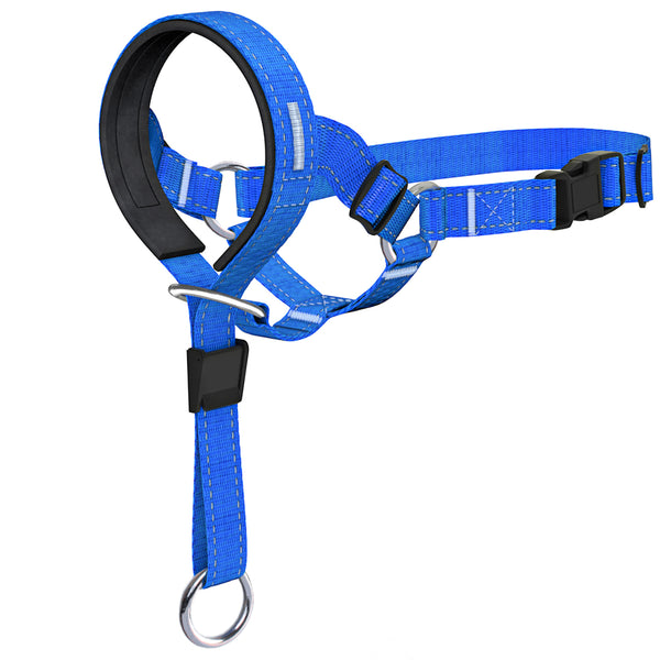 Color Head Halter Blue