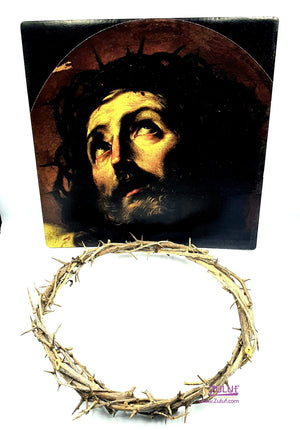 Holy land Gift the crown of thorns HlG015 - Zuluf