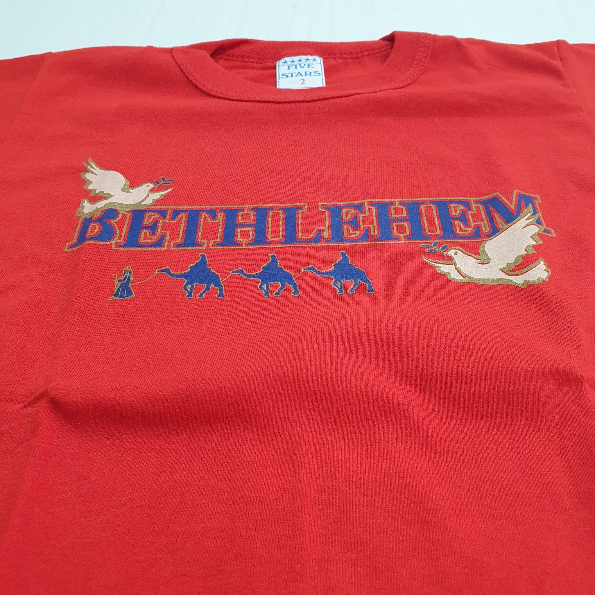 TSHo015 bethlehem dove t shirt 2 years old - Zuluf