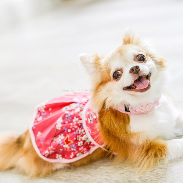 Eastern Girl DOG & CAT HARNESS - GLITTER POOCH DOG & CAT HARNESS