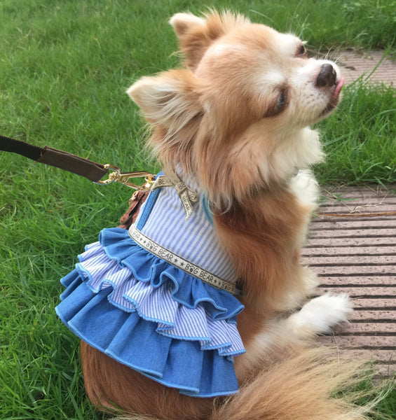 Lady bluebeary DOG & CAT HARNESS - GLITTER POOCH DOG & CAT HARNESS